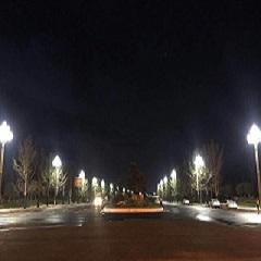 四川南充玉兰灯项目