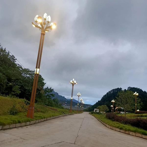 华北地区景观玉兰灯