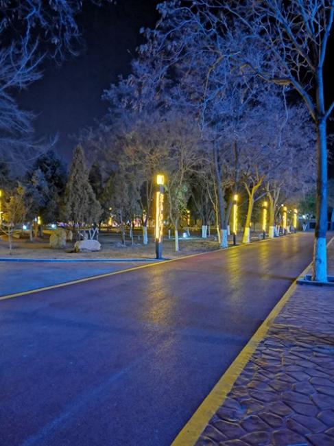 华南地区景观灯